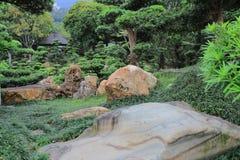 倾斜的盆景结构树,凯爱林女修道院,香港 图库摄影