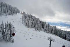倾斜的顶视图在冬天 库存照片