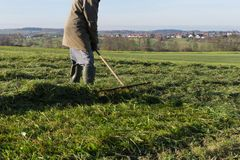 倾斜草的老农夫 图库摄影
