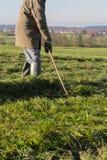 倾斜草的老农夫 库存图片