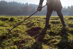 倾斜草的老农夫 免版税图库摄影