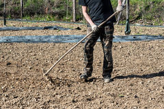 倾斜被耕种的土壤的许多在农场或托儿所 免版税库存照片