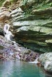 倾斜长满与常春藤和青苔与流动一点瀑布 免版税库存图片