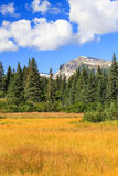 倾斜Mountain湖克拉克国家公园 库存照片