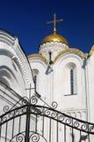 假定大教堂在弗拉基米尔,俄罗斯 免版税库存照片