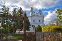 假定大教堂在波尔塔瓦,乌克兰 木被雕刻的门在 免版税库存图片