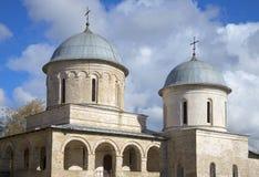 假定大教堂的两个圆顶 Ivangorod 库存图片
