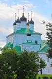 假定的教会圆顶在假定修道院里在亚历克萨尼昂,俄罗斯 免版税库存照片