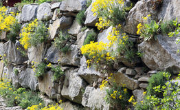 假山花园或庭院墙壁 库存照片