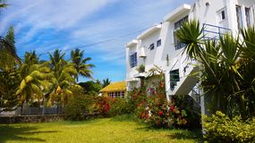 假日公寓,热带庭院棕榈树,毛里求斯 免版税库存图片
