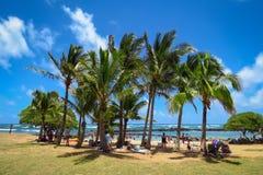 假日在天堂:海滩,蓝色海洋,palmtrees,Lydgate海滩公园,Wailua,考艾岛,夏威夷 免版税库存照片