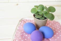 假日复活节复活节 装饰的构成 与一朵花的复活节彩蛋在罐 复活节彩蛋是紫色和蓝色的 免版税库存图片