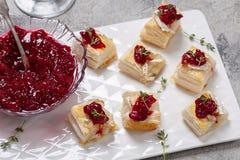 假日开胃菜用蔓越桔、咸味干乳酪和麝香草 库存图片