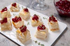 假日开胃菜用蔓越桔、咸味干乳酪和麝香草 免版税库存照片