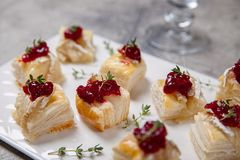 假日开胃菜用蔓越桔、咸味干乳酪和麝香草 免版税图库摄影
