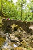 假日游客和游人Aira迫使瀑布阿尔斯沃特湖Valley湖区Cumbria英国英国 免版税库存图片