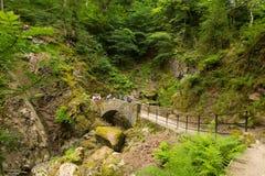 假日游客和游人Aira迫使瀑布阿尔斯沃特湖Valley湖区Cumbria英国英国 库存图片