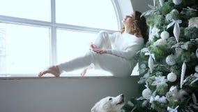 假日,少妇坐窗台近装饰的圣诞树和宠物在舒适大气 股票视频