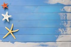 假日,海海星 免版税图库摄影
