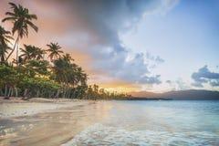 假期在多米尼加共和国 图库摄影