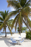 假期在开曼群岛 库存照片