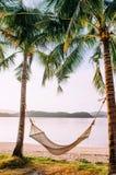 假期垂悬从在海滩的椰子树的放松吊床 库存图片