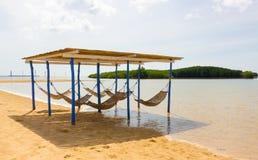 假期概念在热带国家 免版税库存图片
