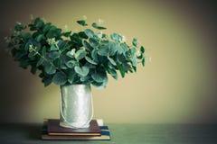 假树是一个少许更旧的罐头投入书 库存图片