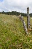 假装海湾--海角斯科特省公园 免版税库存照片
