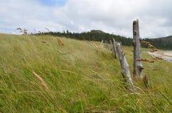 假装海湾--海角斯科特省公园 图库摄影