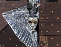 假装的人-阿讷西威尼斯式狂欢节2014年 图库摄影