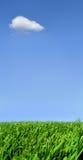 偏僻的云彩 免版税图库摄影