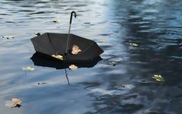 偏僻的伞 向量例证