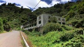 偏僻的大厦在森林里 影视素材
