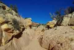 偏僻的峡谷,犹他 免版税库存照片
