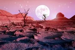 偏僻的干燥树在反对美丽的桃红色天空和满月的沙漠 月光在沙漠 艺术性的自然图象 库存照片