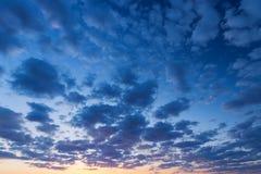 偏僻的日落结构树 库存照片
