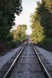 偏僻的树木繁茂的舒展火车轨道 库存图片