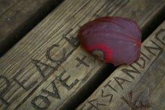 偏僻的红色叶子 免版税图库摄影
