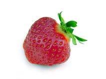 偏僻的草莓 免版税库存图片