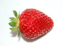 偏僻的草莓 免版税图库摄影