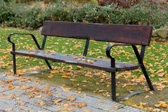 偏僻的banch在秋天 库存照片