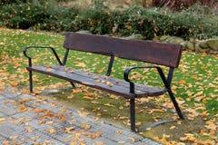 偏僻的banch在秋天 库存图片