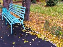 偏僻1条的长凳 库存图片