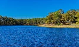 偏远地区池塘在秋天 库存照片