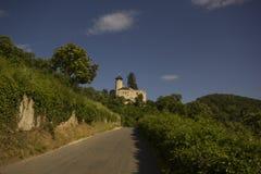 偏僻寺院在Arlesheim (巴塞尔) 图库摄影