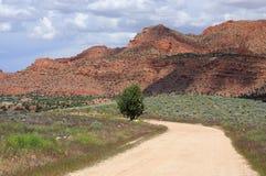 偏僻的亚利桑那路 免版税图库摄影