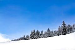 偏僻的冬天风景 图库摄影