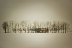 偏僻的大农场 图库摄影