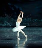偏僻的天鹅芭蕾天鹅湖 库存图片